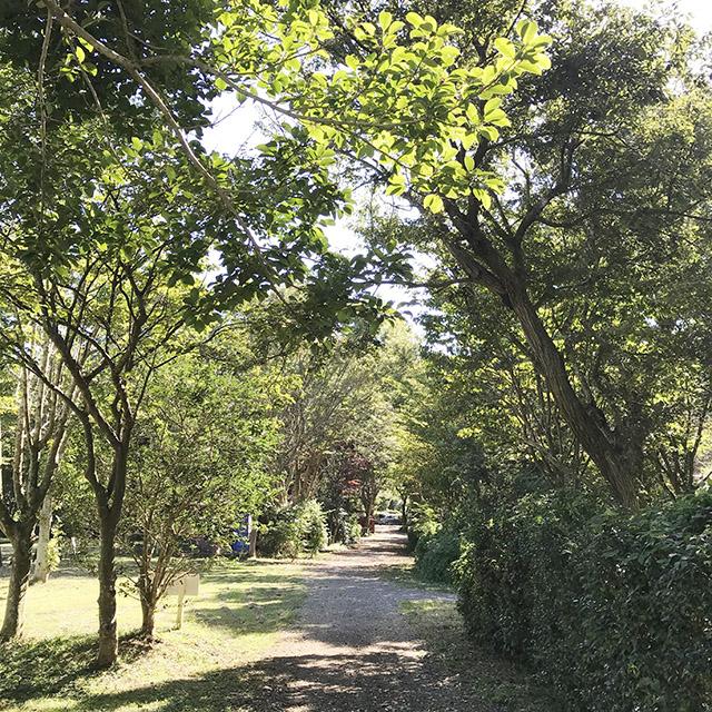 キャンプ場 千葉県